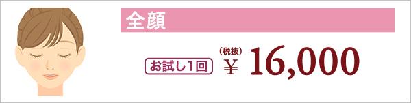 全顔 お試し1回 ¥16,000(税抜)