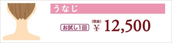 うなじ お試し1回 ¥12,500(税抜)
