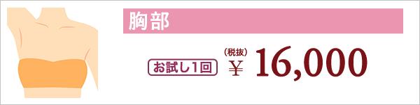胸部 お試し1回 ¥16,000(税抜)