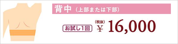 背中 (上部または下部) お試し1回 ¥16,000(税抜)