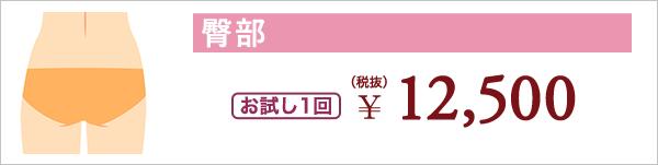 臀部 お試し1回 ¥12,500(税抜)