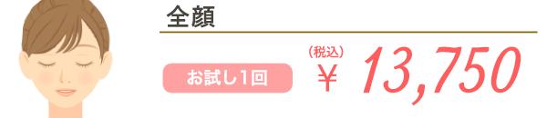 全顔 お試し1回 ¥17,600(税込)