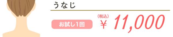 うなじ お試し1回 ¥13,750(税込)