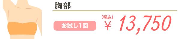 胸部 お試し1回 ¥17,600(税込)